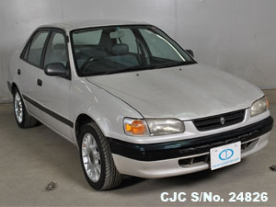1995 toyota corolla pearl for sale stock no 24826 japanese used cars exporter. Black Bedroom Furniture Sets. Home Design Ideas