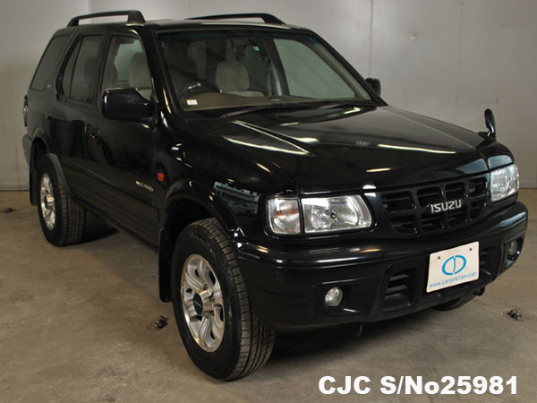 Import Isuzu Wizard from Japan