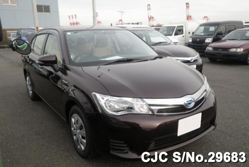 Toyota / Corolla Axio 2015 1.5 Petrol
