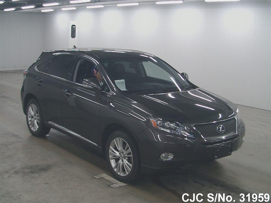 2010 lexus rx 450h black for sale stock no 31959 japanese used cars exporter. Black Bedroom Furniture Sets. Home Design Ideas