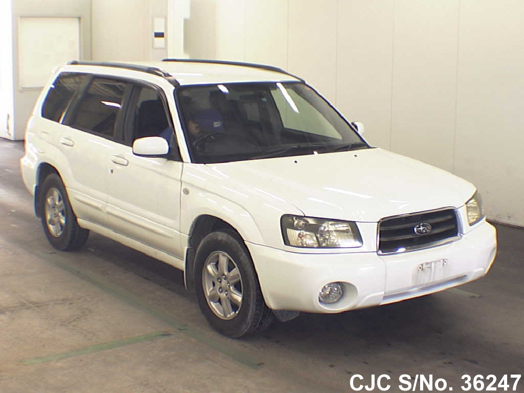 2003 subaru forester white for sale stock no 36247 japanese used cars exporter. Black Bedroom Furniture Sets. Home Design Ideas