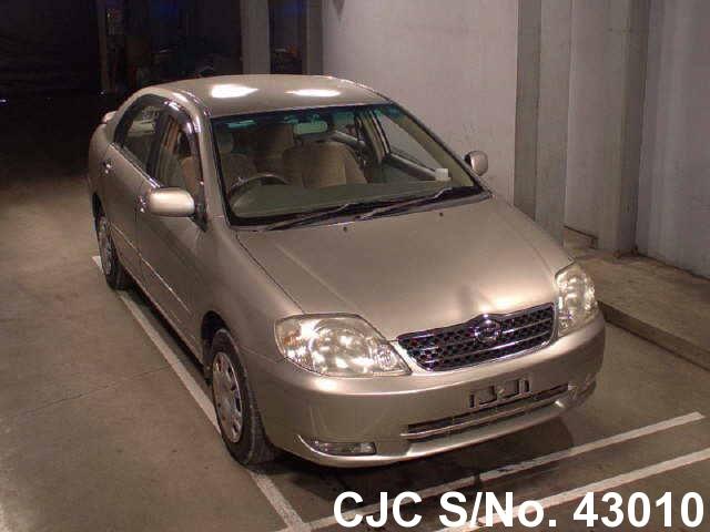 Toyota / Corolla 2001 1.8 Petrol