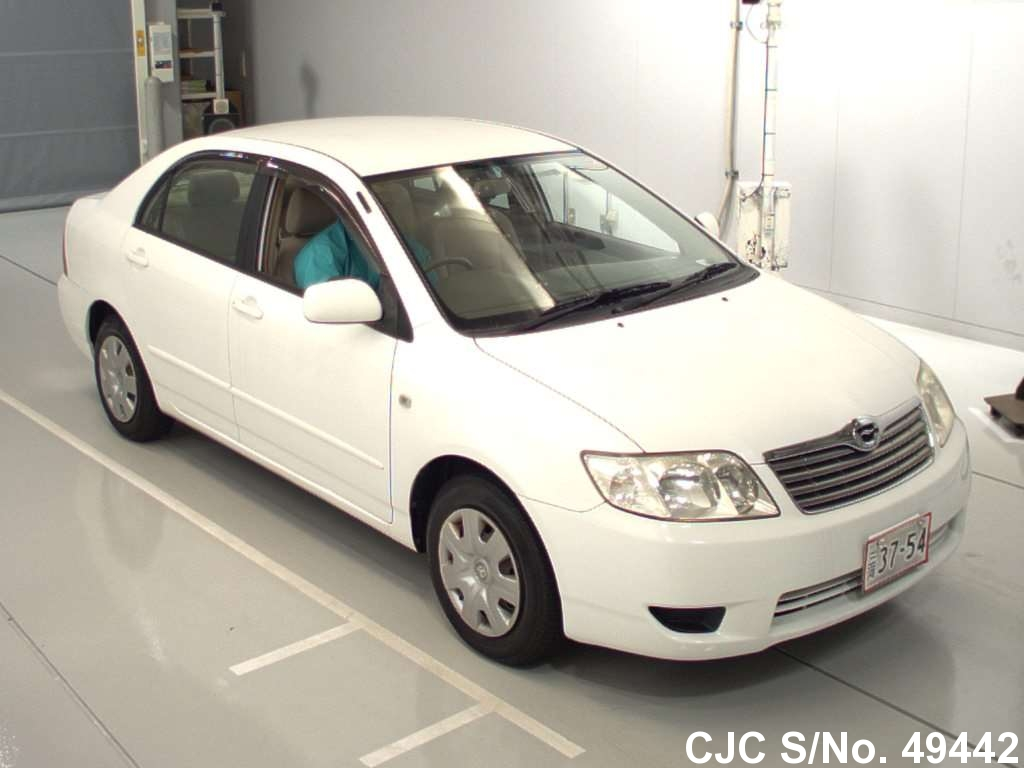 2004 toyota corolla white for sale stock no 49442 japanese used cars exporter. Black Bedroom Furniture Sets. Home Design Ideas