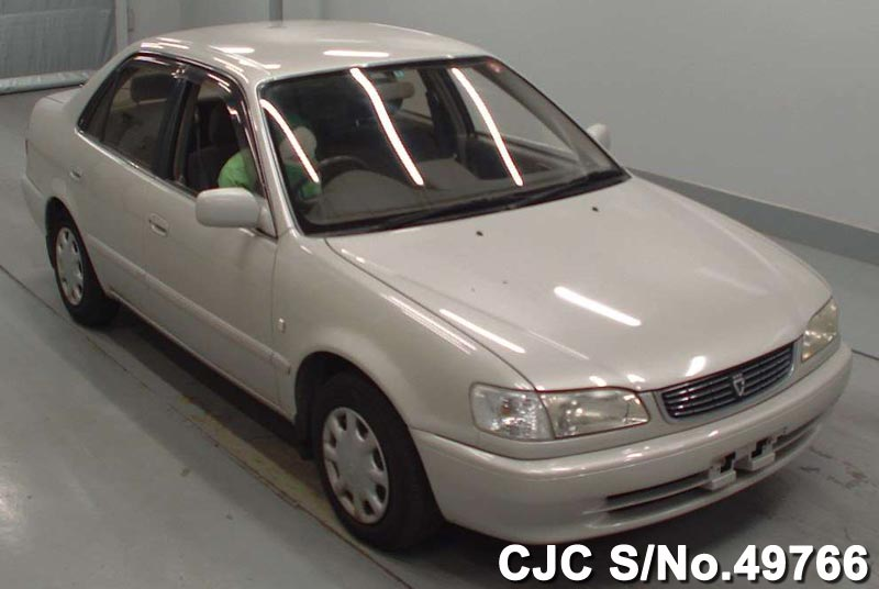 1996 toyota corolla white for sale stock no 49766 japanese used cars exporter. Black Bedroom Furniture Sets. Home Design Ideas