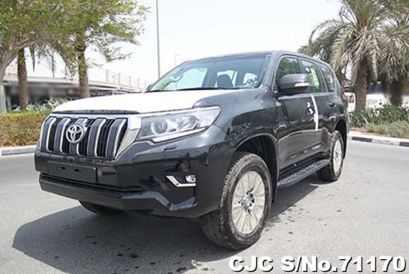 2019 Toyota / Land Cruiser Prado Stock No. 71170