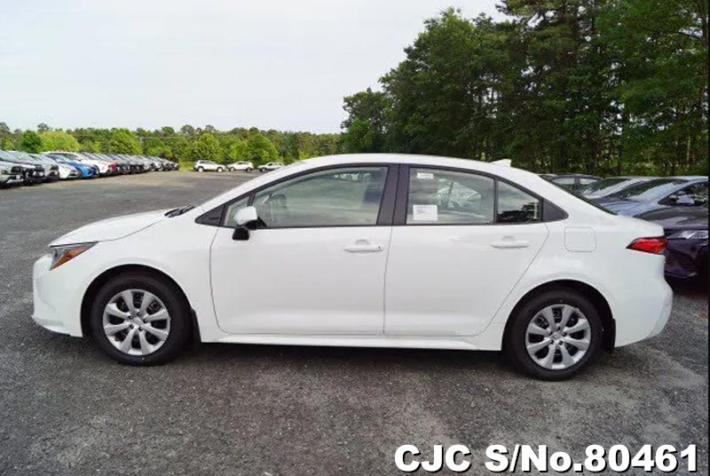 2020 Toyota / Corolla Stock No. 80461