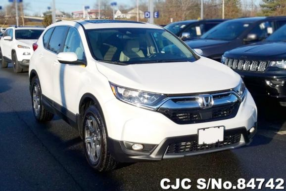 2019 Honda / CRV Stock No. 84742