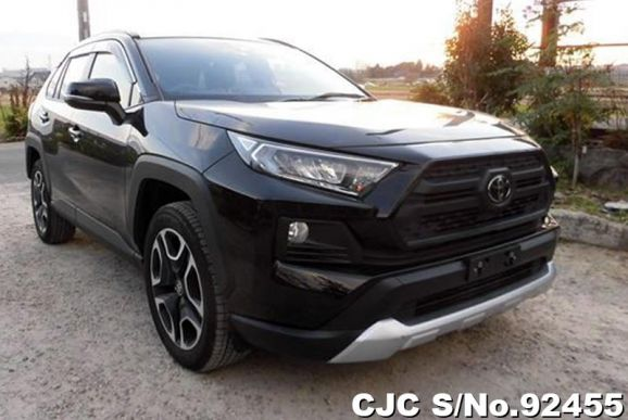 2019 Toyota / Rav4 Stock No. 92455